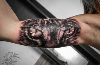 cat-eyes5