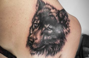 Předělávka - Vlk
