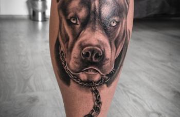 Pes na řetězu
