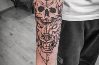 Vlk a lebka